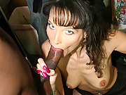 Brunette Cougar MILF gets interracial gangbang